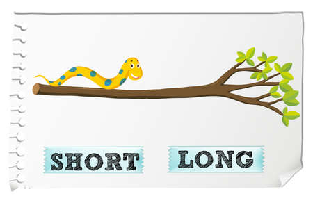 crawling animal: Opposite adjectives short and long illustration