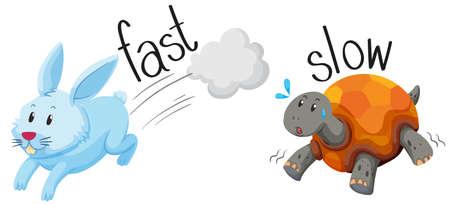 Konijn loopt snel en schildpad loopt langzaam illustratie