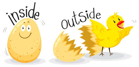 opposite: Opposite adjectives with inside and outside illustration