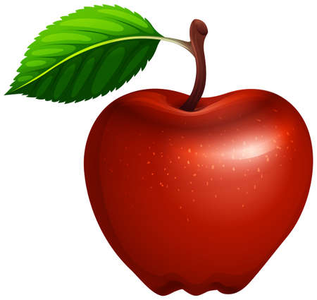 red apple: Red apple with leaf and stem illustration Illustration