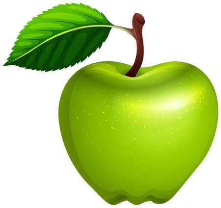 apple clipart: Green apple with leaf and stem illustration Illustration