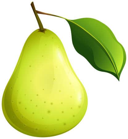 Pera verde con foglia illustrazione Archivio Fotografico - 49391340