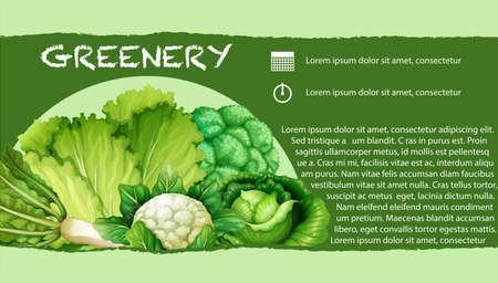 Los vegetales verdes con la ilustración de texto
