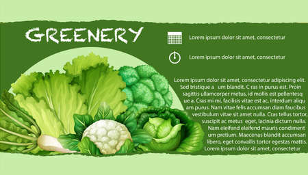 verduras verdes: Los vegetales verdes con la ilustración de texto