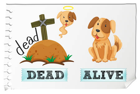 adjectives: Opposite adjectives dead and alive illustration