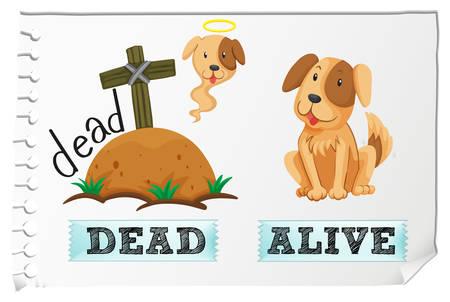 dead dog: Opposite adjectives dead and alive illustration