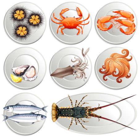 plato de pescado: Diversos tipos de productos del mar en las placas de la ilustración