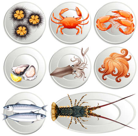 Various kind of seafood on plates illustration