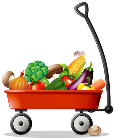 Fresh vegetables in red wagon illustration
