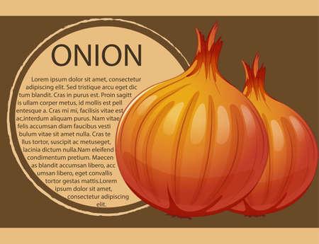 Infographic design with fresh onions illustration Illustration