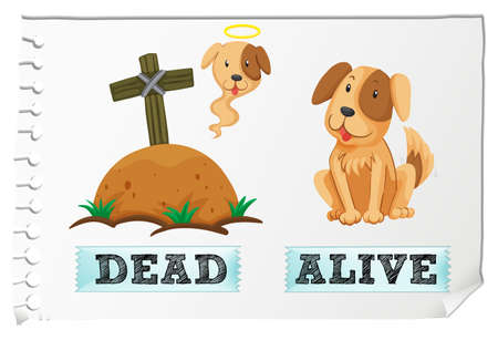 Opposite adjective with dead and alive illustration Illustration