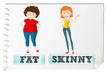 skinny: Frente a los adjetivos de grasa y la ilustración flaco