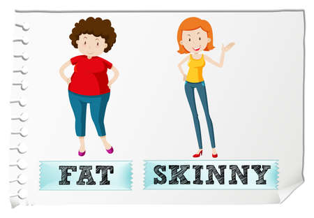 Opposite adjectives fat and skinny illustration