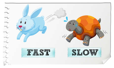 and opposite: Opposite adjectives fast and slow illustration Illustration