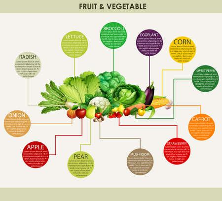 kulinarne: Świeże warzywa i owoce ilustracji Ilustracja