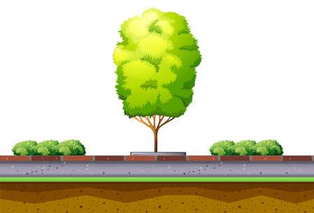 sidewalk: Tree and bush on the street illustration Illustration