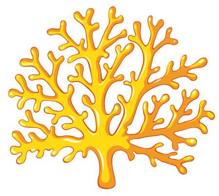 Gelbe Koralle auf weiß Illustration