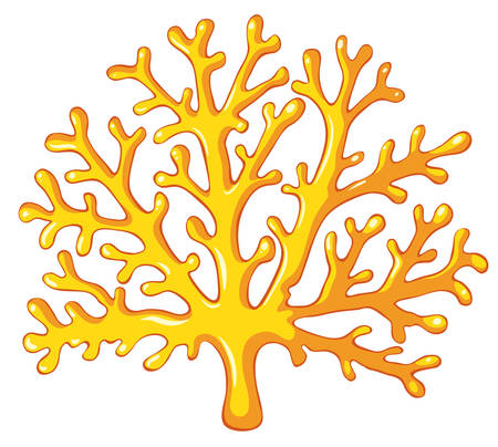 Yellow coral on white illustration