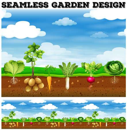 granja: Diferentes tipos de verduras en el huerto ilustración