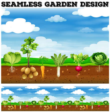 Different kind of vegetables in the garden illustration Иллюстрация