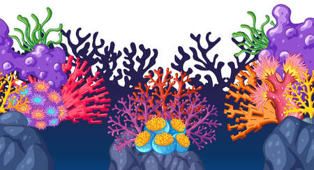 Colorful coral reef underwater illustration
