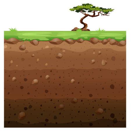 Solo árbol en la superficie y la Ilustración de la escena subterránea
