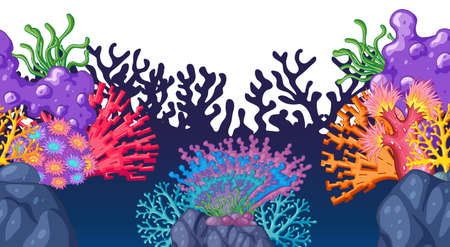 ocean plants: Seamless coral reef under the ocean illustration