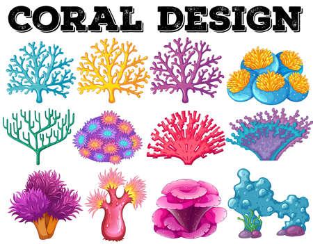 rock stone: Different kind of coral design illustration