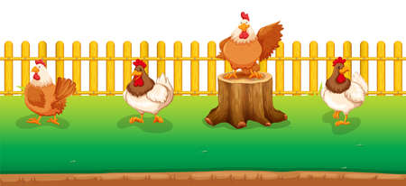 log on: Four chickens standing in the field illustration