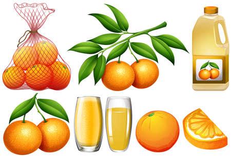 Oranges and orange products illustration