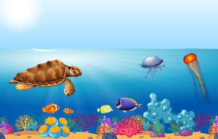 wild animals: Sea animals swimming under the ocean illustration