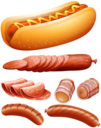 Different kind of meat and hotdog illustration
