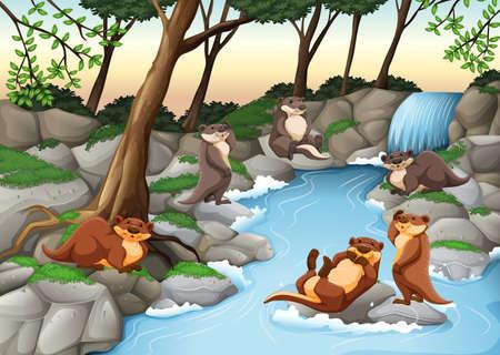 nutria caricatura: Los castores viven en la ilustración río