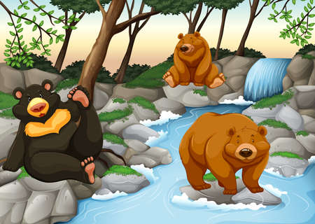 river rock: Three bears living by the waterfall illustration Illustration