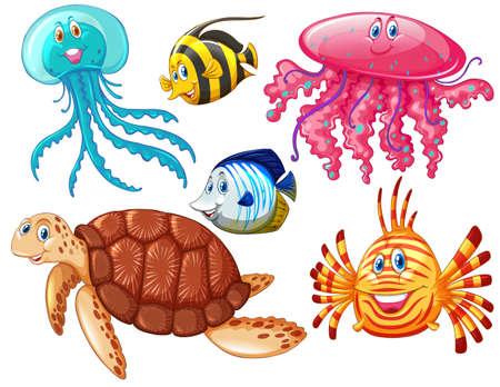 carnivorous fish: Various kind of sea animals illustration