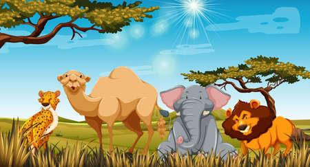 daytime: Wild animals in the field at daytime illustration