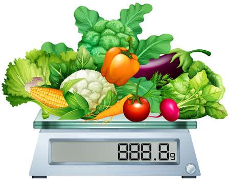 green vegetables: Fresh vegetables on the scales illustration