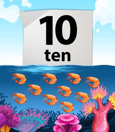 numero diez: El número diez y diez camarones ilustración bajo el agua Vectores