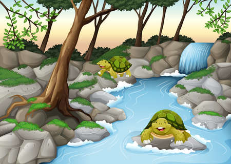 waterfall in forest: Two turtles living in the river illustration Illustration