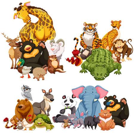 cartoon panda: Four group of wild animals illustration