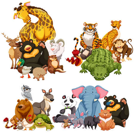 Four group of wild animals illustration
