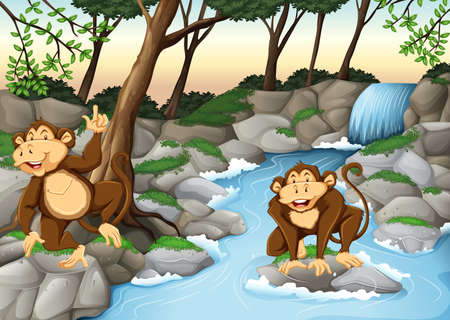 waterfall in forest: Two monkeys living by the waterfall illustration