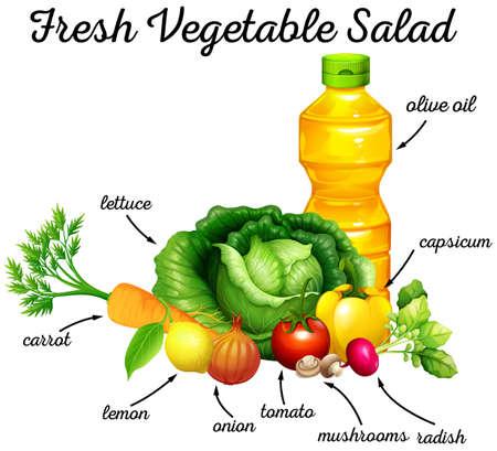 veggie: Fresh vegetables and olive oil for salad illustration