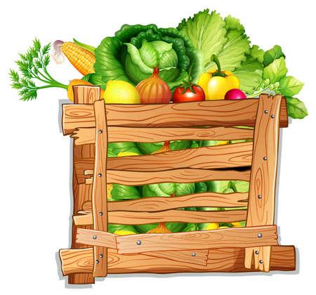 Wiele warzywa w drewnianej pudełkowatej ilustraci