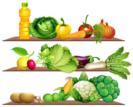 culinary arts: Fresh vegetables and oil on the shelf illustration