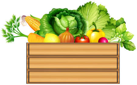 Fresh vegetables in the box illustration