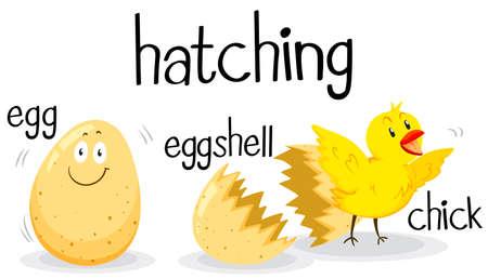 being: Little chick being hatched illustration Illustration