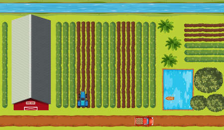 truck tractor: Top view of farmland with crops illustration