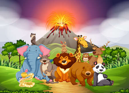 cartoon volcano: Wild animals in the field with volcano background illustration