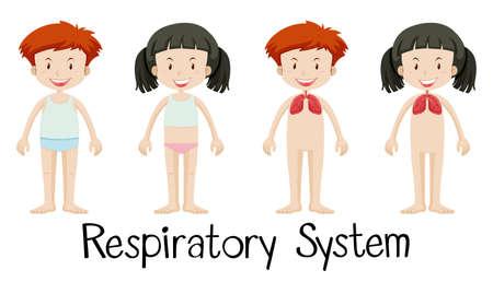 arts system: Children and respiratory system illustration Illustration